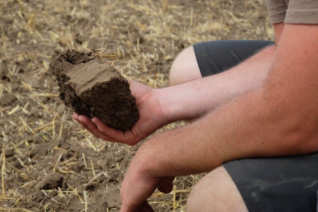 Ein Erdstück (Bodenprobe) vom Feld in der Hand